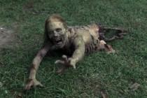 «Мертвецы идут!»
