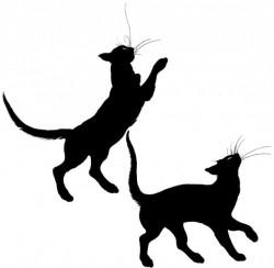 zouravliov-cats.jpg