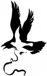 zouravliov-crow.jpg