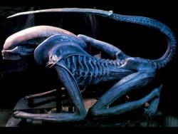 alien3-1.jpg