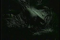 alptraum-3.jpg