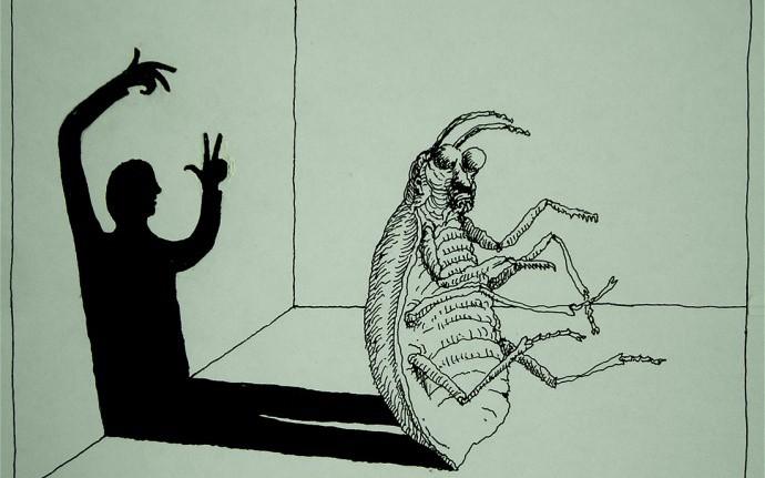 О жуках, о людях, о любви