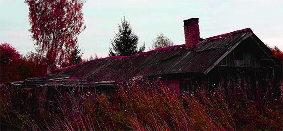 Дом. Заброшенная деревня. Фото