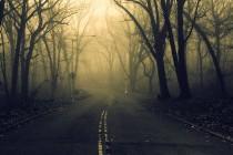 Андрей Сенников «Что-то не отпускает никогда...»