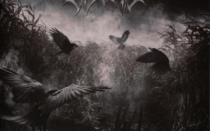 Крик мертвых птиц