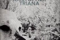 Вышел дебютный роман Кристофера Трианы