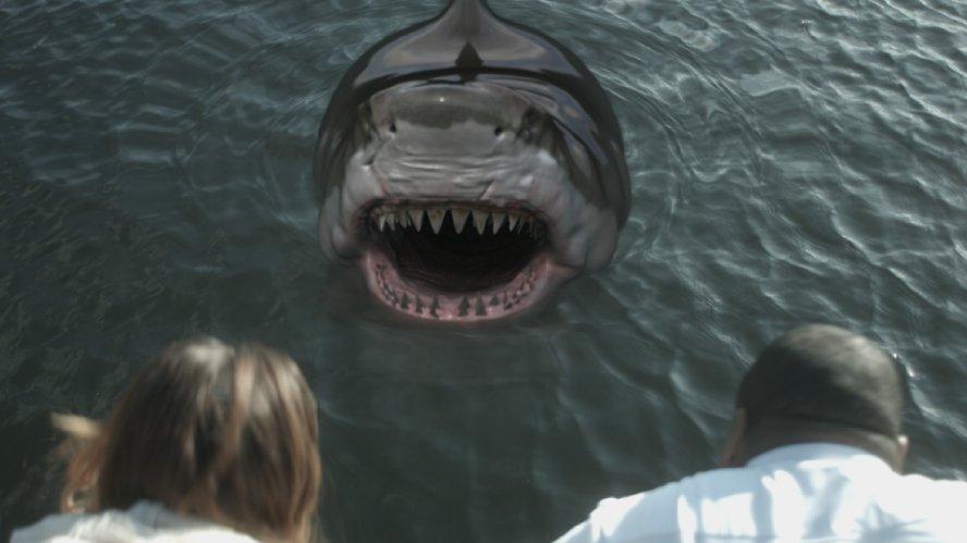 Акульи плотины