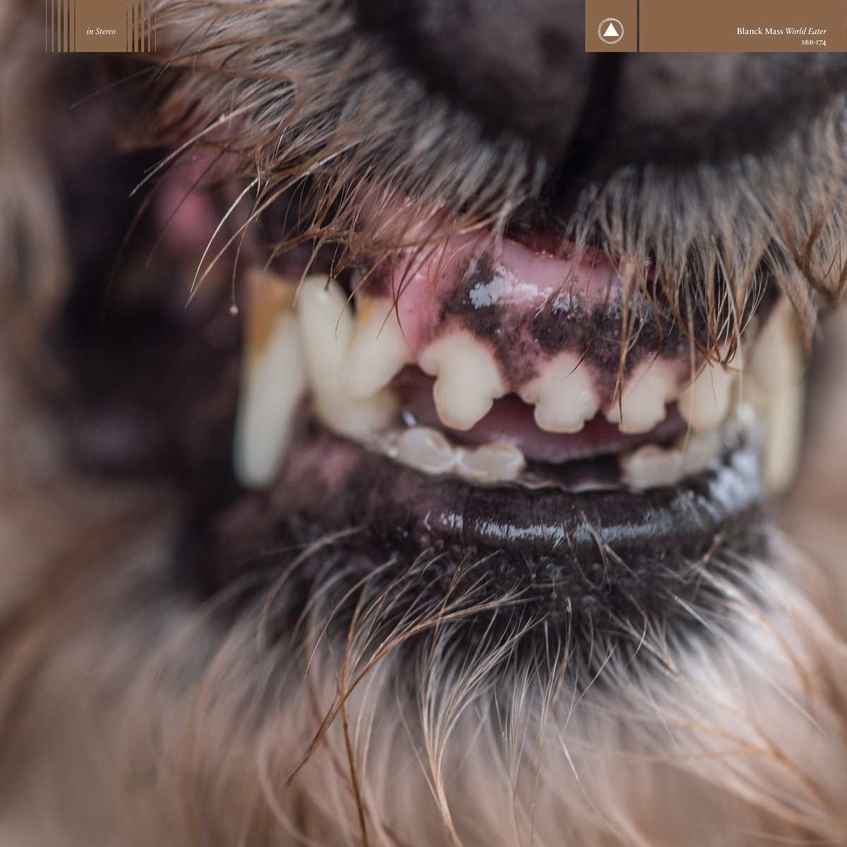 Blanck Mass World Eater