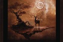 Магия луны и таинства духа ночи
